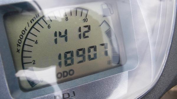 P1100446.JPG