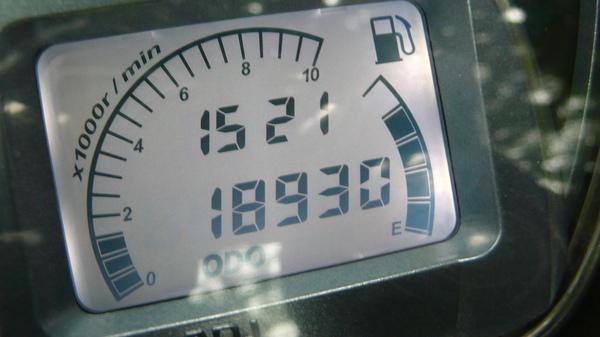 P1100453.JPG
