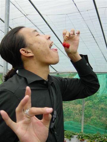 草莓之酸甜篇01.JPG