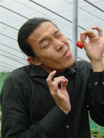 草莓之酸甜篇02.JPG