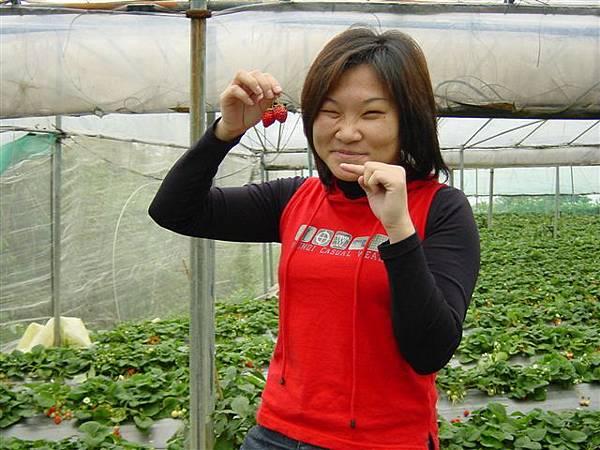 草莓之酸甜篇07.JPG