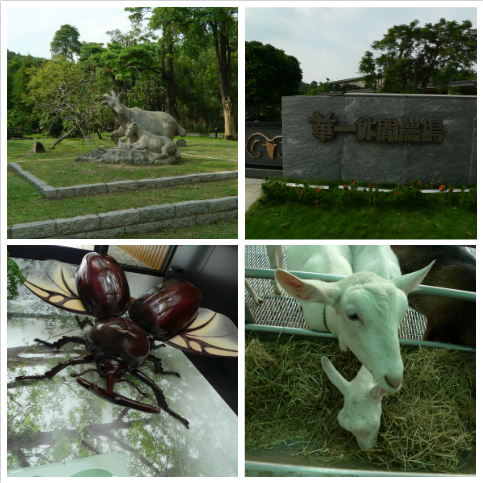 嘉南羊乳牧場1.png