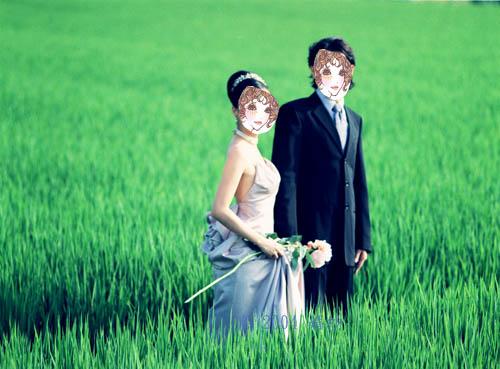 婚紗 稻田裡