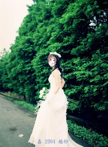 婚紗 白玫瑰