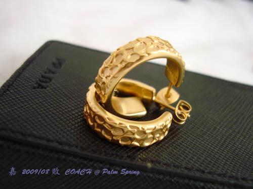 DSC01956-Coach earring1.jpg