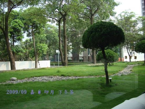 DSC02777-印月下午茶-窗外庭園.jpg
