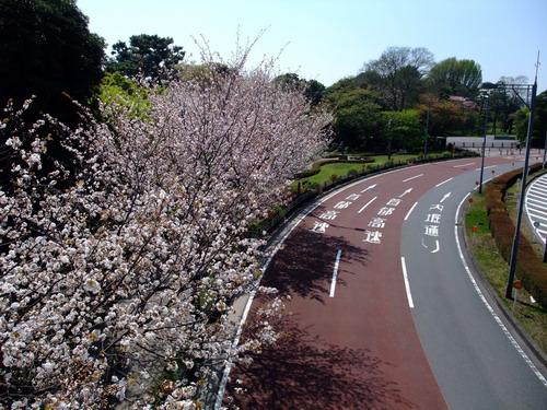 東京道路2