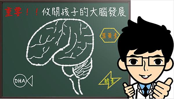 孩子的大腦發展很重要.png