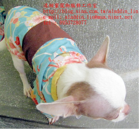 狗狗日本服08.JPG