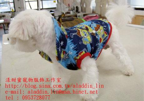 海綿寶寶帶領襯衫0a.JPG