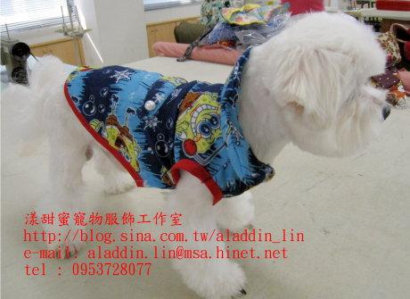 海綿寶寶帶領襯衫0b.JPG