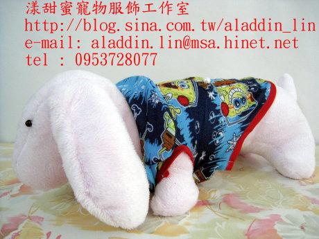 海綿寶寶帶領襯衫05.JPG