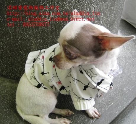 黑白貓帶領狗狗襯衫06.JPG