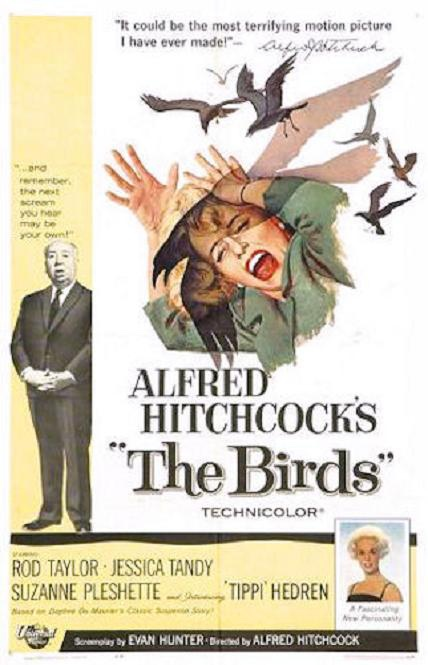 鳥(The Birds)