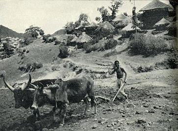 衣索比亞 -17f