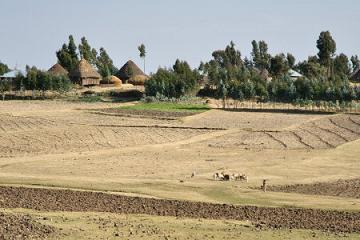 衣索比亞歷史之旅 (3)