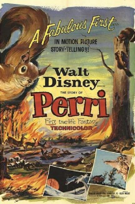小松鼠 (Perri)