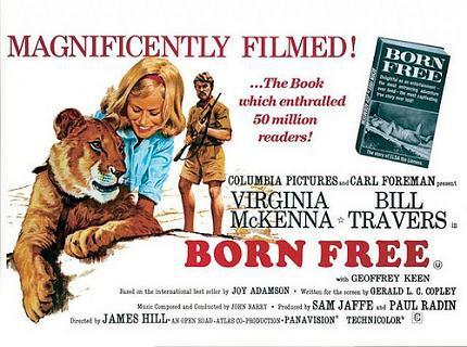 獅子與我 (Born Free)