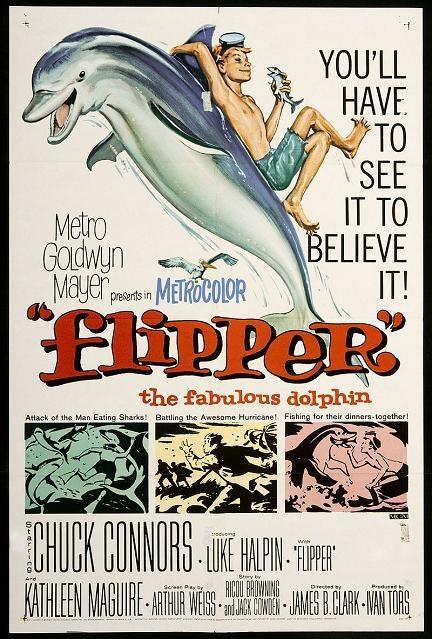 漁家樂 (Flipper)