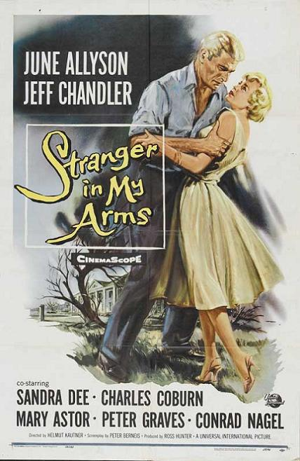 孤孀情淚 (A Stranger in My Arms)