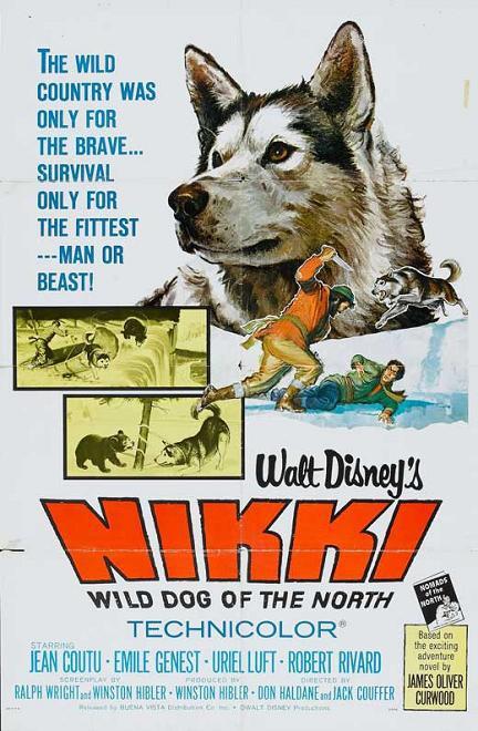 野灰王 (Nikki, Wild Dog of the North)