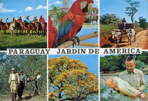 夢憶巴拉圭 (I Dreamed of Paraguay) 【I】