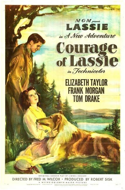 義犬歷險 (Courage of Lassie)