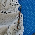 Begonia Swirl (10).jpg