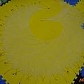 Begonia Swirl (1).jpg