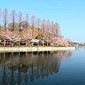 京阪自由行-day3 (46) 大阪城公園.JPG