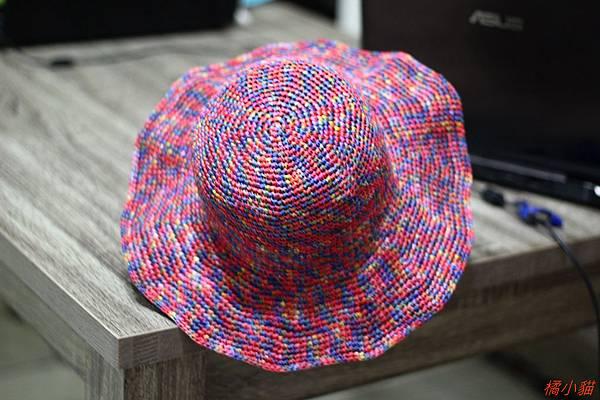 艷夏海灘遮陽帽 (10).JPG