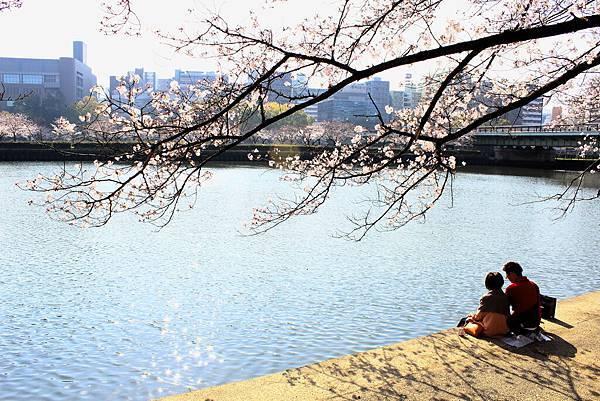 京阪自由行-day3 (519) 毛馬櫻之宮公園.JPG