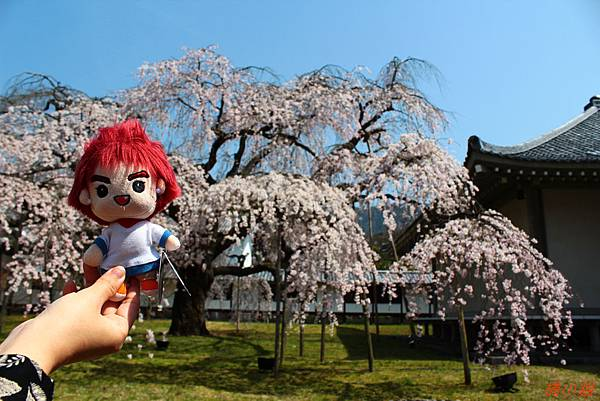 京阪自由行-day4-4 醍醐寺靈寶館(146).jpg