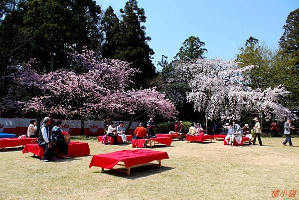 京阪自由行-day4-2 醍醐寺三寶院(96).jpg