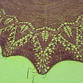 The_Chevalier_Shawl (9).jpg