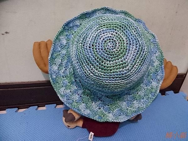 艾可紙線遮陽帽 (5).JPG