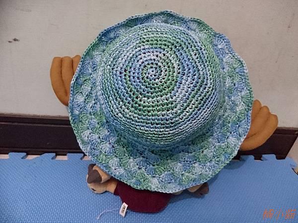 艾可紙線遮陽帽 (6).JPG