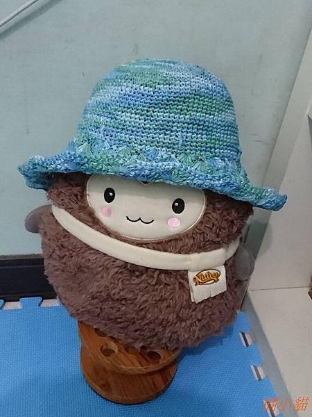 艾可紙線遮陽帽 (7).JPG