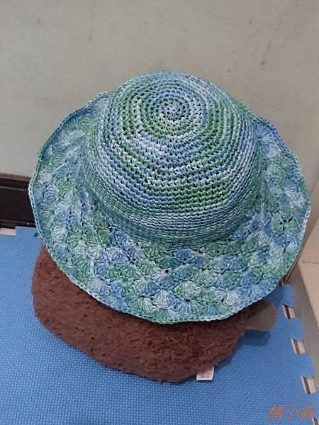艾可紙線遮陽帽 (8).JPG