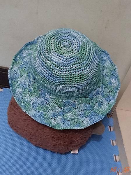艾可紙線遮陽帽 (9).JPG