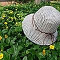 紙線斜紋帽 (21).jpg