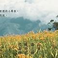 河豚版頭-D.花田版(950x300).jpg