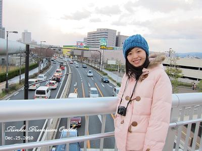 20101225_Rinku Premium Outlet_163754_s95.jpg