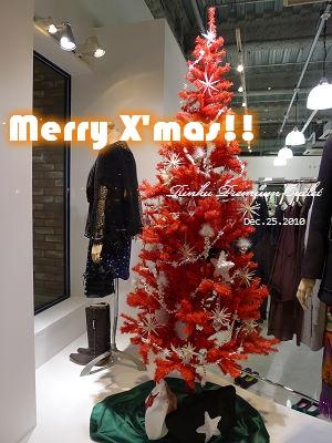 20101225_Rinku Premium Outlet_174734_lx5.JPG