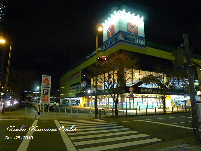 20101225_Rinku Premium Outlet_174123_lx5.jpg