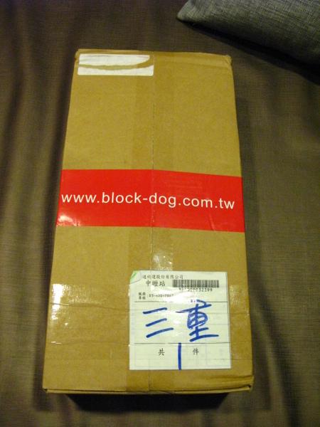 Block Dog.JPG