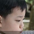 山上人家2011_0430_024.jpg