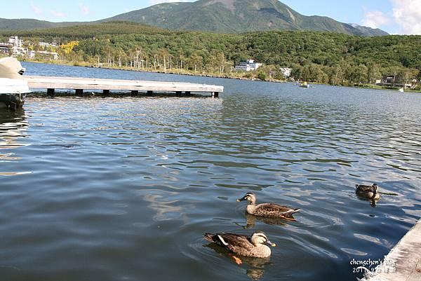 abm白樺湖21.jpg