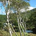 abm白樺湖39.jpg
