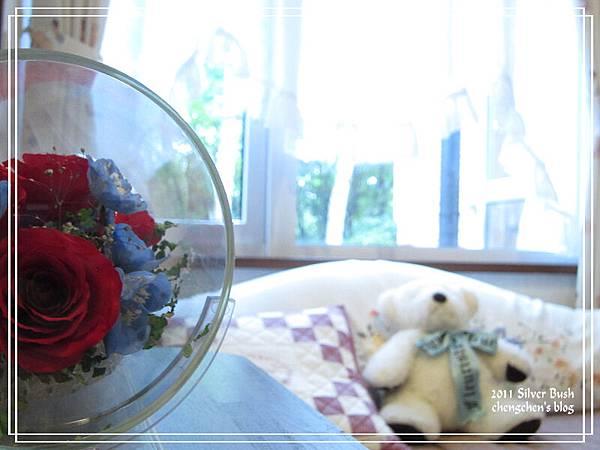 abm_silver bush9.jpg